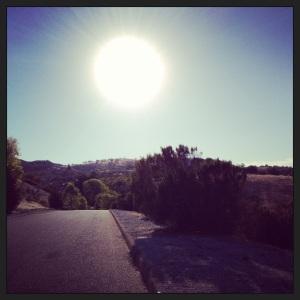Into the sun :)