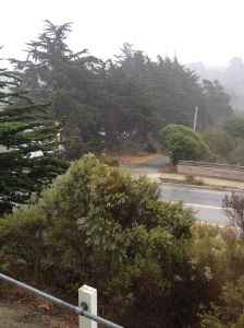 It really is raining!