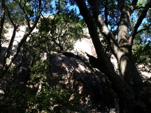There were people climbing the backside of the rockface