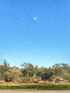 Hi moon!