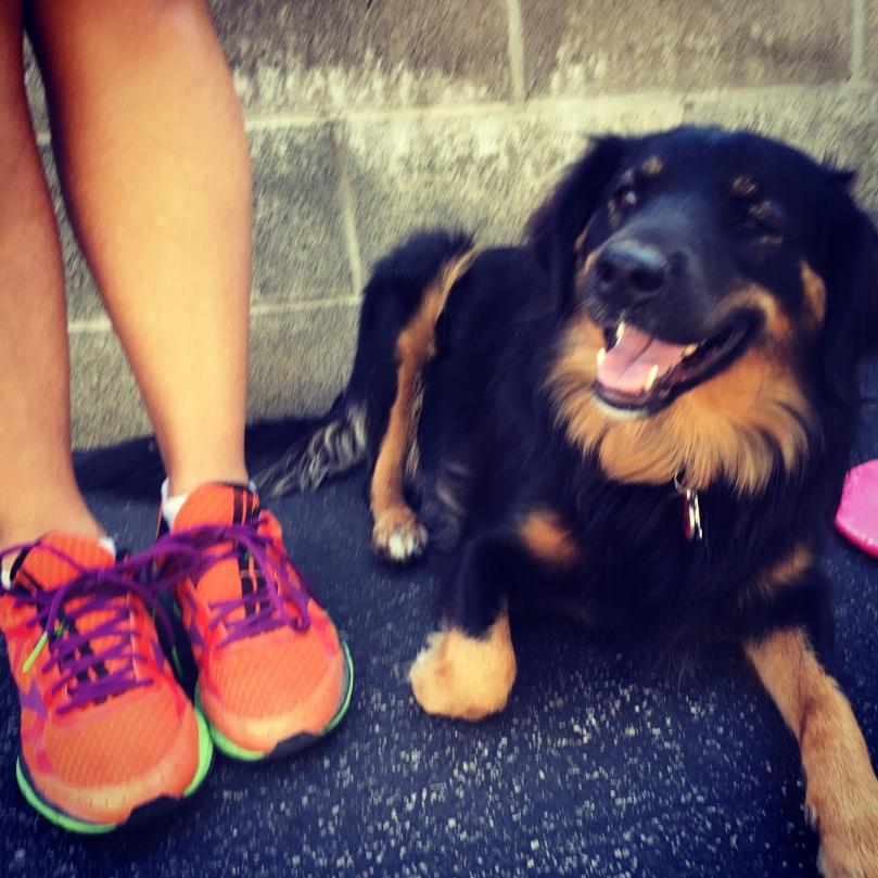 Post run puppy visit